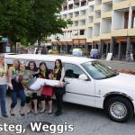Limousine Weggis