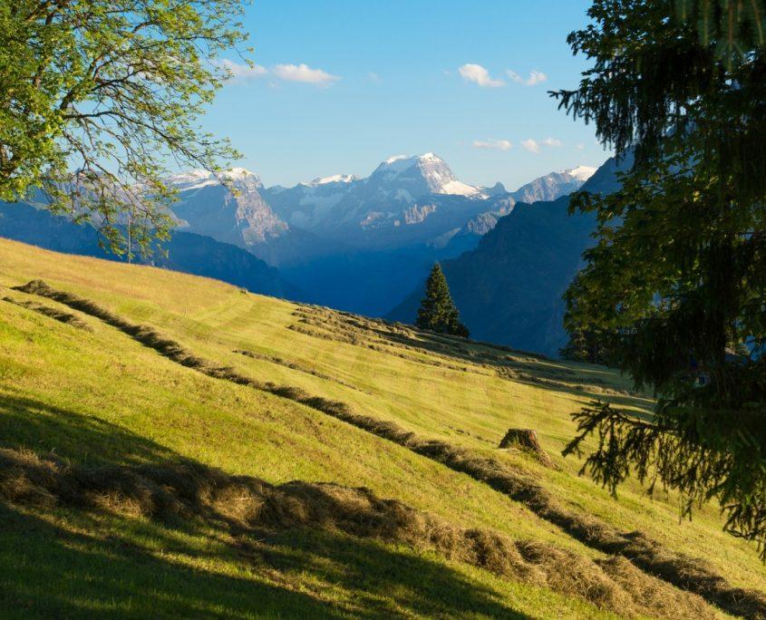 Glarus Aussicht auf die Berge